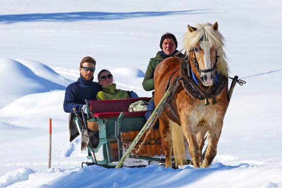 Pferdeschlittenfahrten - Winterurlaub - Radstadt - Ferienwohnung - Zeitgenuss - Salzburger Land